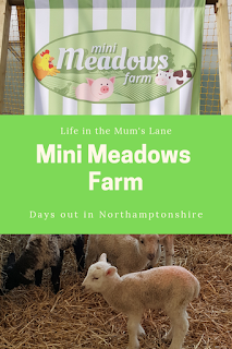 Mini Meadows Farm