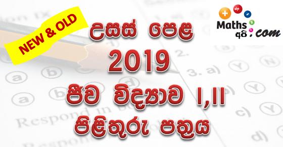 Advanced Level Biology 2019 Marking Scheme