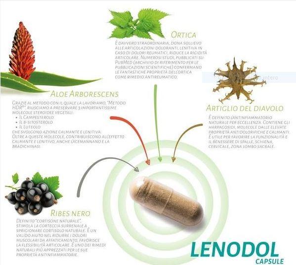 Aloe Arborescens Bio, azione calmante e lenitiva