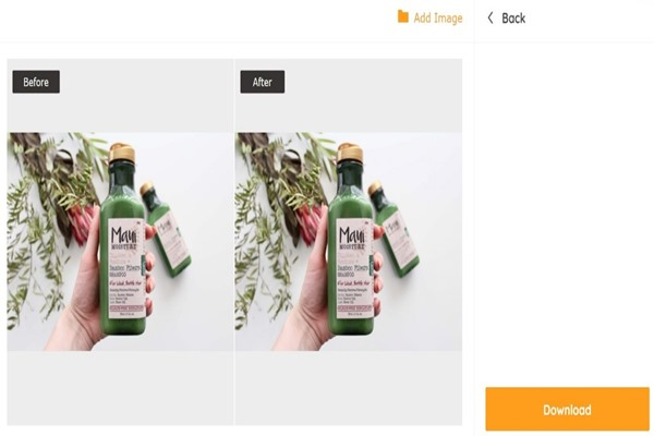 Download the enlarged product image
