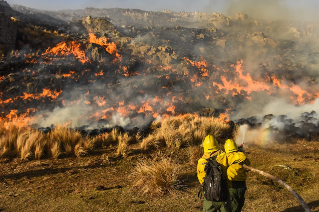 Intensa labor de Bomberos en los incendios - Imagen de Archivo