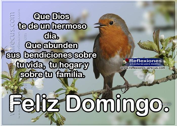 Feliz domingo, que dios te de un hermoso día, que abunden sus bendiciones sobre tu vida, tu hogar y sobre tu familia.