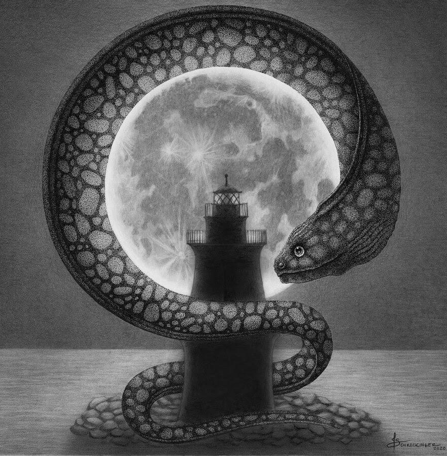 03-The-Moray-eel-and-the-moon-Juliet-Schreckinger-www-designstack-co