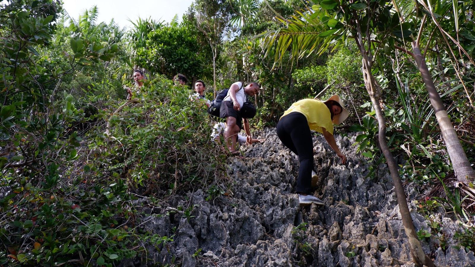 mendaki ke puncak wayag