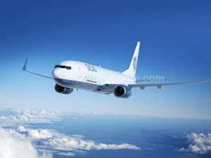 Boeing 737-800BCF Specs, Payload, Cockpit, and Price