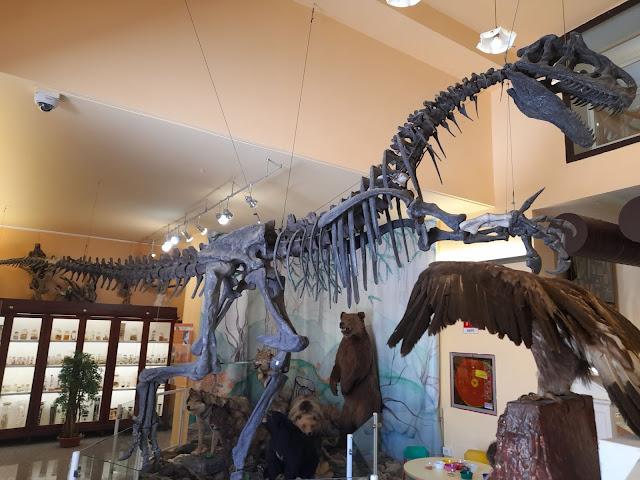 museo Chieti