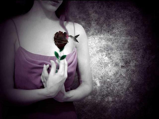 Thơ song thất lục bát hay về tình yêu, cô đơn tâm trạng nhất