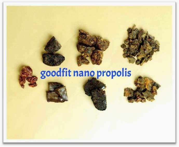 jenis propolis