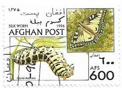 Selo Papilio machaon