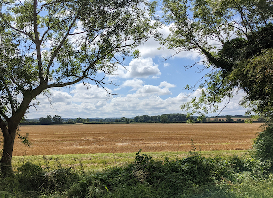 The view south from the stone bench on Pirton bridleway 21