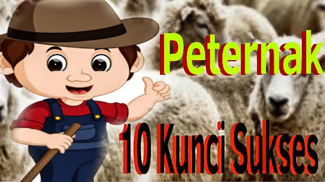 Kunci Sukses Peternak Pemula