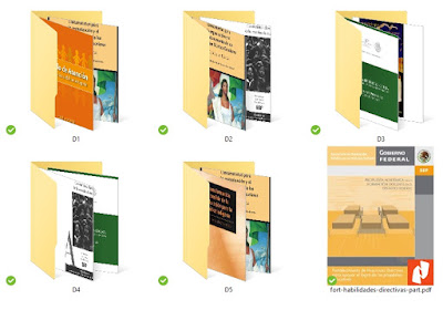 bibliografia examen promoción a dirección