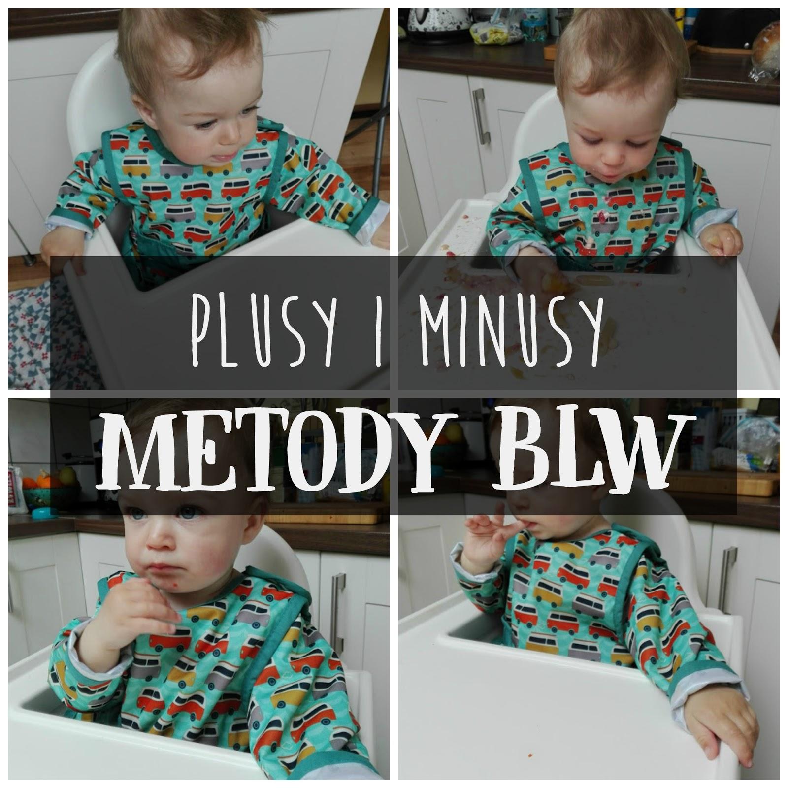 Plusy i minusy BLW, BLW