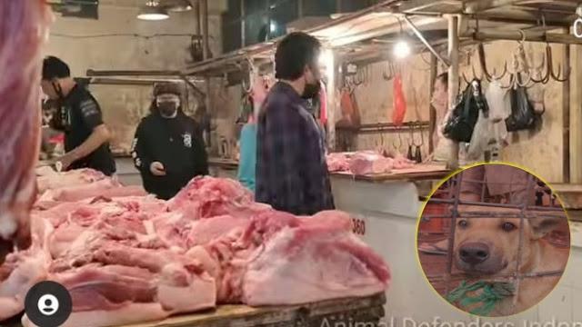 Geger Daging Anjing Dijual Bebas di Pasar Senen Jakarta, Berdampingan dengan Daging Lain