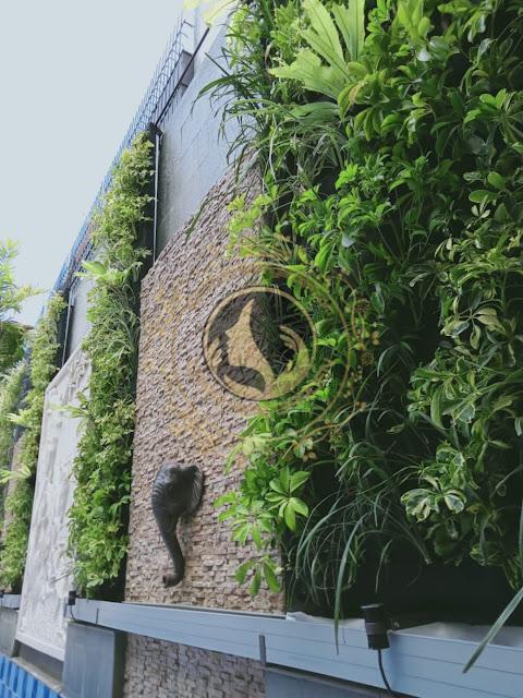 Tukang taman vertical solo