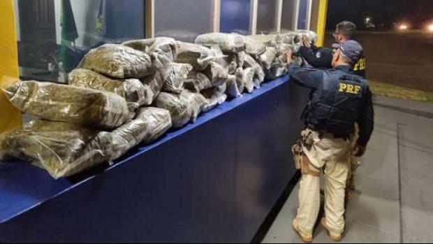 Santa Terezinha de Itaipu: Polícia apreende cerca de 60 kg de Skunk
