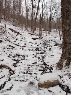Mont Sutton, sentier l'hiver