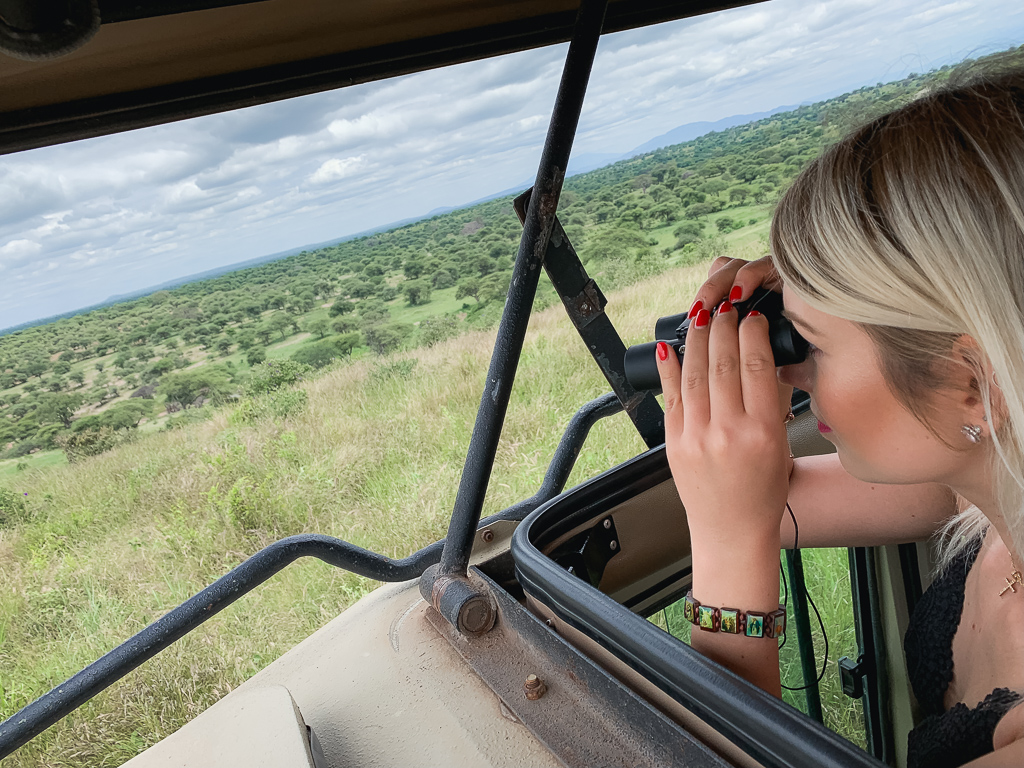 Serengeti National Park Review