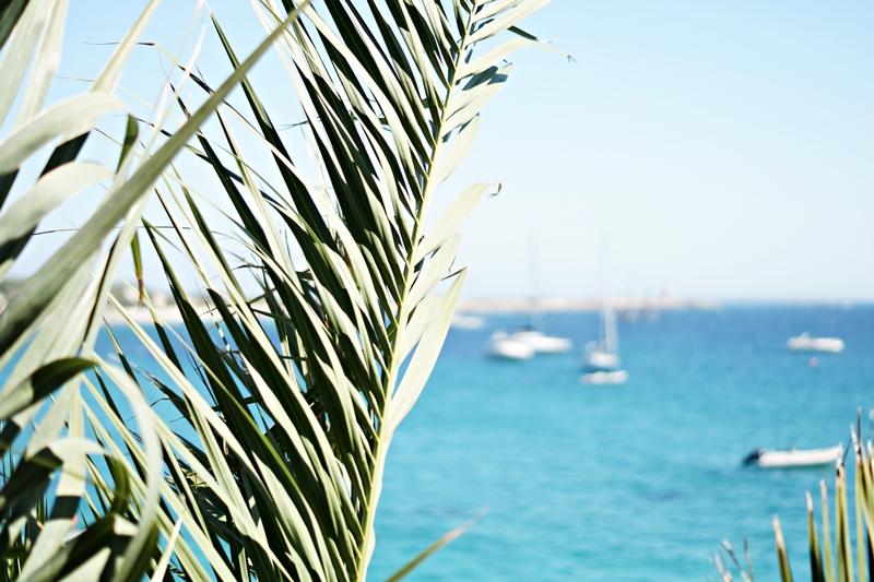 Blog + Fotografie by it's me! - Ses Salines, Ibiza - Blick aufs Meer durch Palmwedel