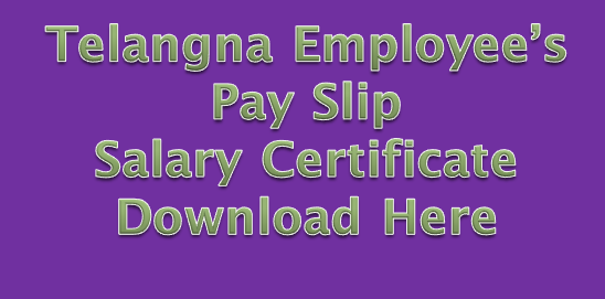 Telangana Employee's Pay Slip/Salary Certificate Download Here