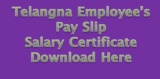 Telangana Employee's Pay Slip/Salary Certificate Download Here
