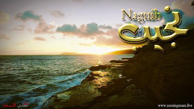 معنى اسم نجيب وصفات حامل هذا الإسم Naguib