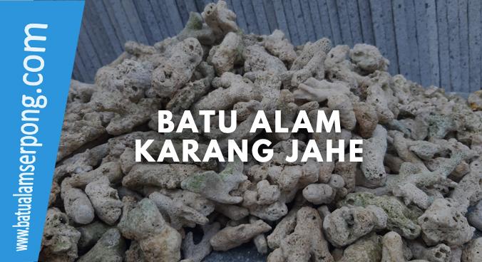 jual batu karang jahe