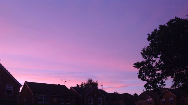 Pink, mauve, lilac, blue sky with houses silhouetted