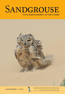 Sandgrouse Cover Photo Supplement 4