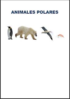 GALERIA  ANIMALE SPOLARES