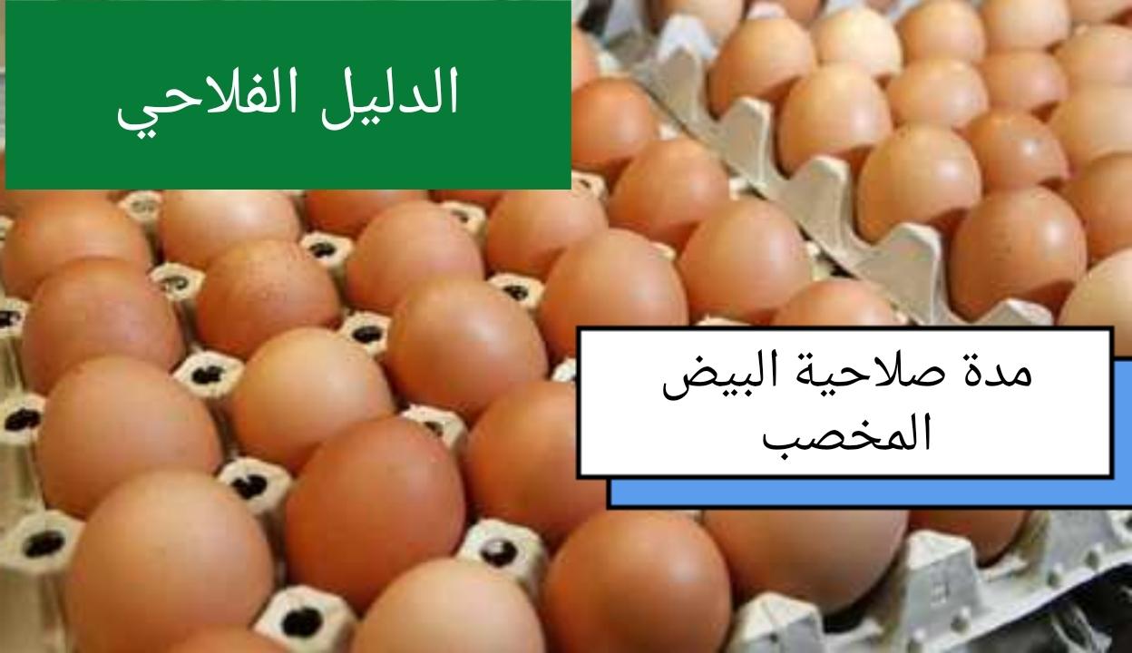 مدة صلاحية البيض المخصب
