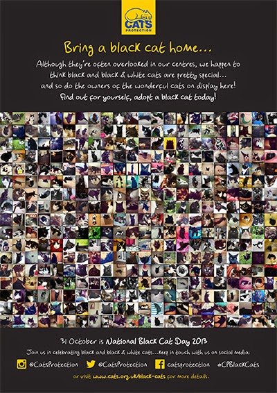 Cats Protection Black Cat Day rehoming poster featuring collage of black cat photos
