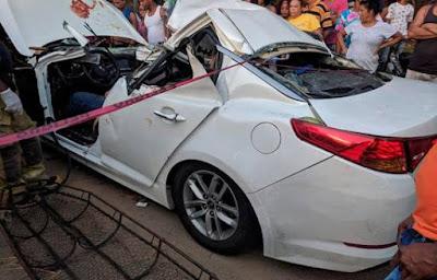 Muere médico y su esposa al caerle un árbol a su vehículo