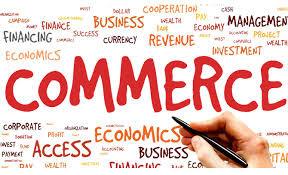 12th Commerce Public Exam Question Paper 2021