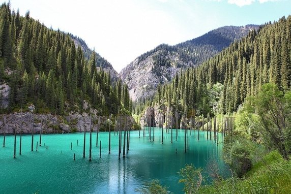 The Sunken Forest of Lake Kaindy in Kazakhstan