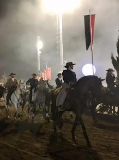 bold lusitano riders in the Golega arena