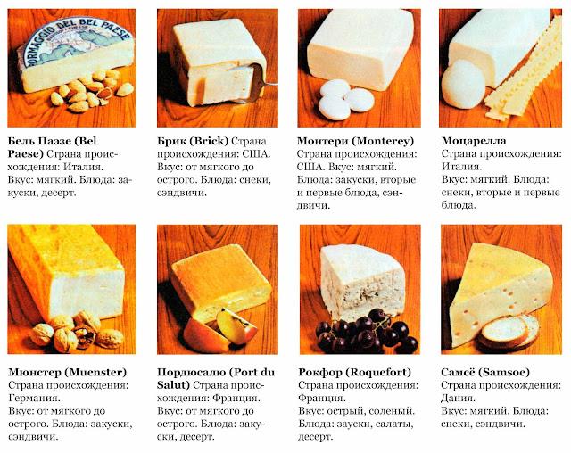 каким бывает сыр