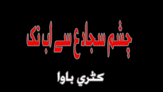 Chasmay Sajjad as Say Ab Tak Bhi Lahoo Jari Hay Lyrics