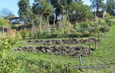 L'orto della fattoria didattica dell'ortica a Savigno ValsamoggiaBologna  in Appennino vicino Zocca