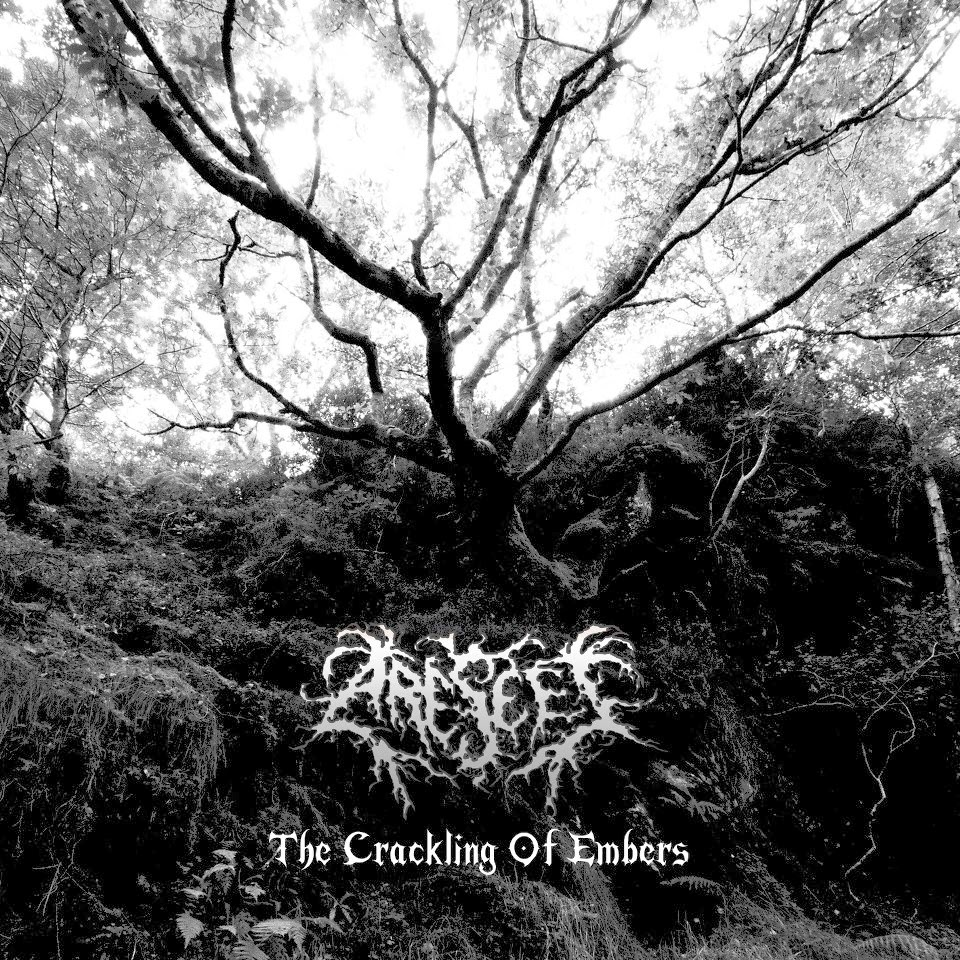 Metal Bandcamp: Arescet - The Crackling of Embers