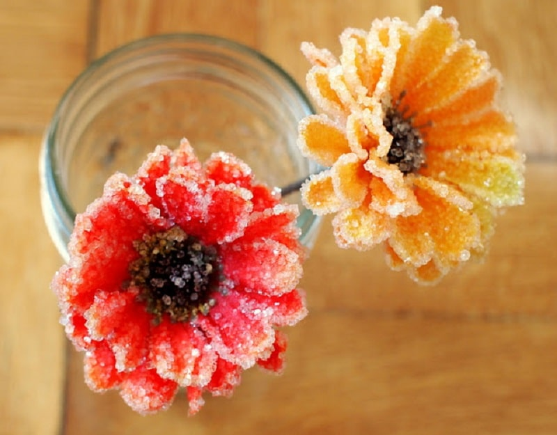 flowers with crystals formed on top