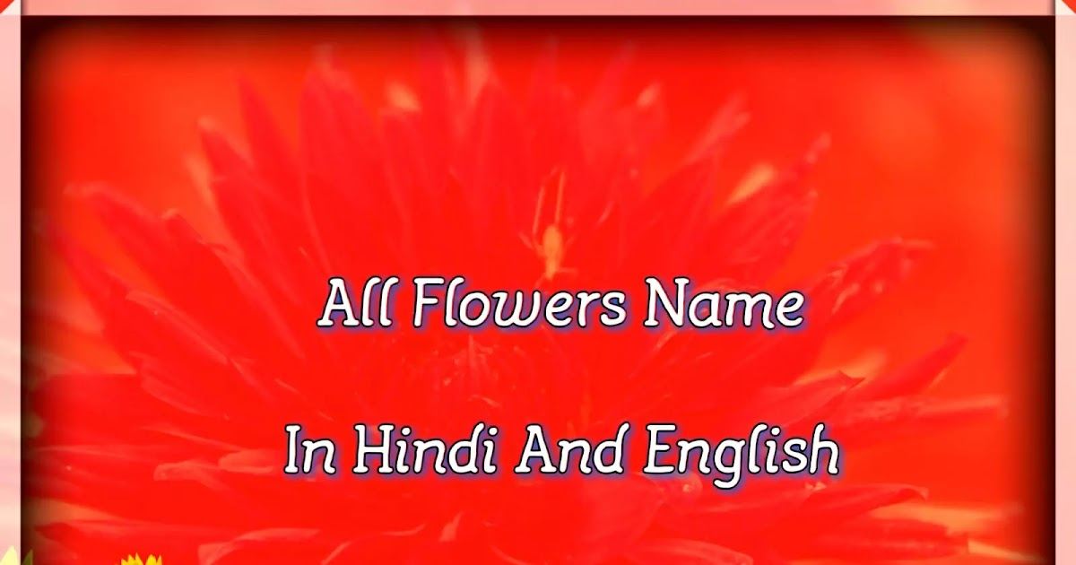 All Flowers Name In Hindi And English À¤¹ À¤¦ À¤®