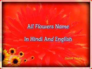 All Flowers Name In Hindi And English - हिंदी में