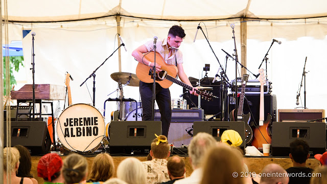 Jeremie Albino at Hillside Festival on Saturday, July 13, 2019 Photo by John Ordean at One In Ten Words oneintenwords.com toronto indie alternative live music blog concert photography pictures photos nikon d750 camera yyz photographer