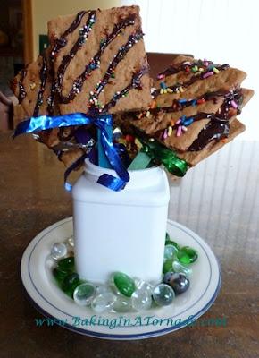 S'Mores on a Stick | recipe developed by www.BakingInATornado.com