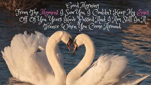 good morning love image with swan