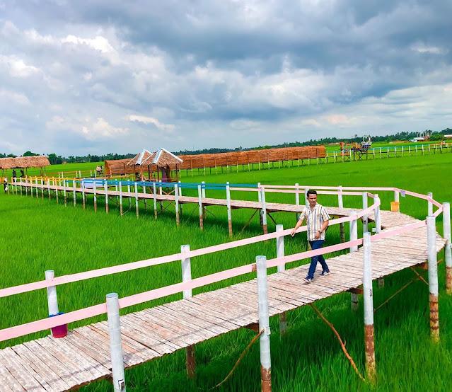 Wisata Sawah Mane Kareung Lhokseumawe Aceh