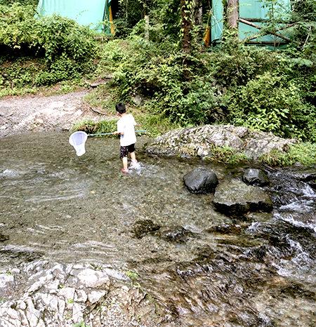 [和歌山-川市粉河]野食倶楽部 ~身近なものを捕って食べよう!