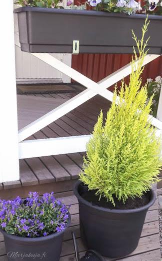 orthex talonpoikais epoque ruukut altakstelu kukat kesä