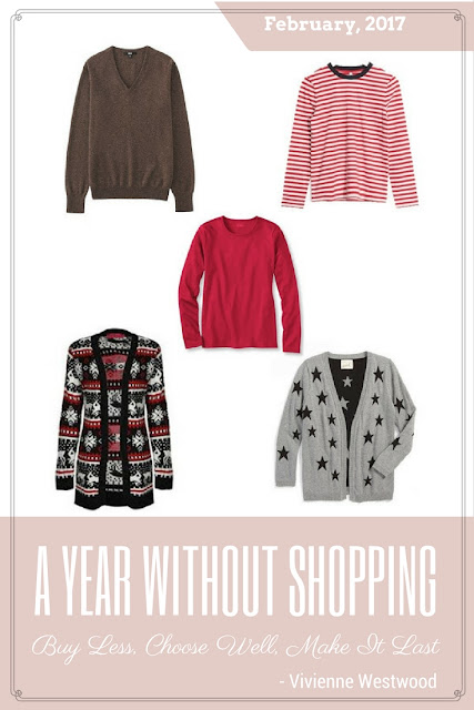 A Year Without Shopping - February's Goals